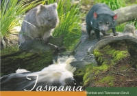 SPOTTERS GUIDE TO WILDLIFE IN TASMAINIA